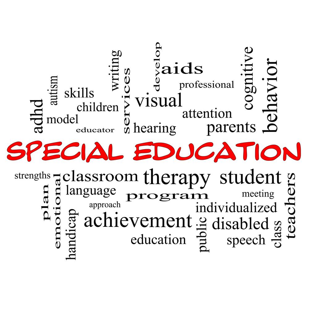 SPECIAL EDUCATION - SPEAKING, LISTENING & LAN