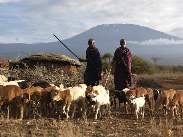 HERDERS IN KENYA