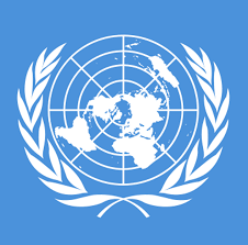 INTERNATIONAL ORGANIZATIONS - READING 2