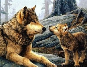 LITTLE WOLF AND MOTHER WOLF