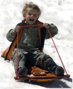 THE BOY AND HIS SLED