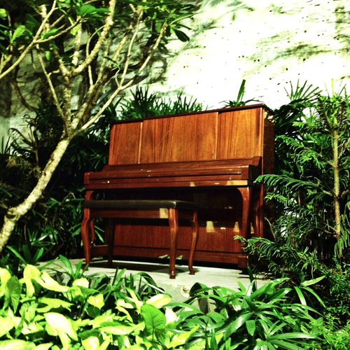 A PIANO IN THE JUNGLE