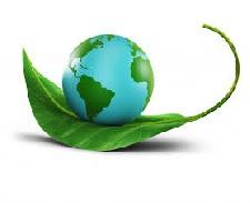 NATURAL WORLD & ENVIRONMENT