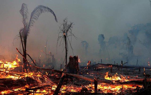 Bài viết về thảm họa thiên nhiên bằng tiếng Anh hay