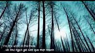 Lời dịch bài hát Forever