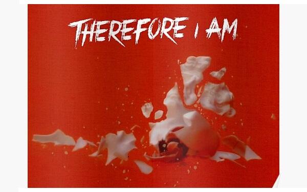 Lời dịch bài hát Therefore I am