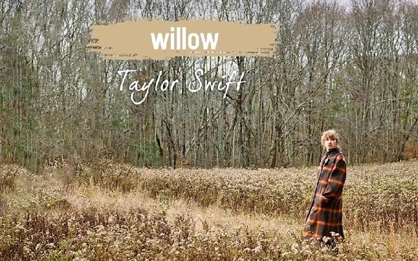 Lời dịch bài hát Willow