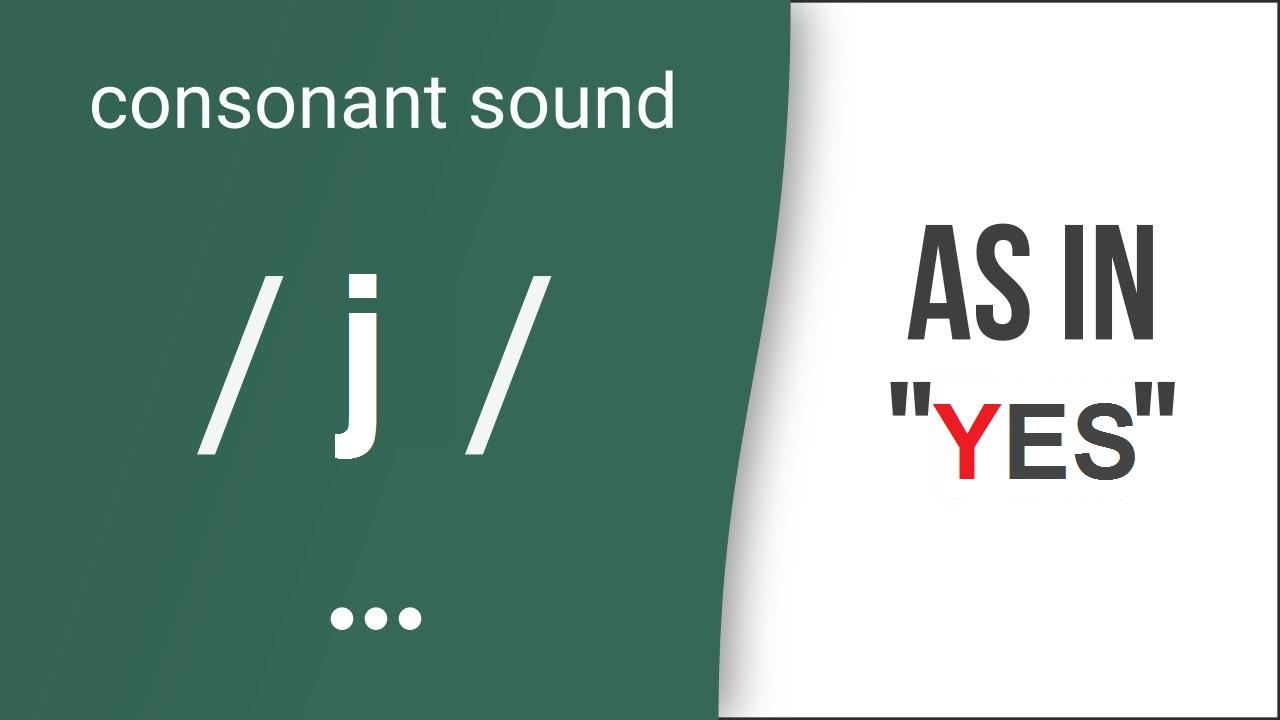 Hướng dẫn cách phát âm tiếng Anh | phụ âm /j/ | Consonants /j/