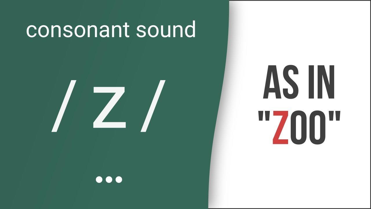 Hướng dẫn cách phát âm tiếng Anh | phụ âm /z/ | Consonants /z/