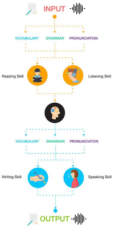 Bạn đã biết cách học tiếng Anh đúng?